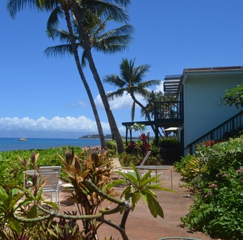 our boutique hotel in lahaina hawaii